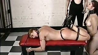 Dominant Shemale Hurts Her Attendant Really Hard